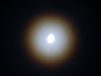DSCN2254.jpg